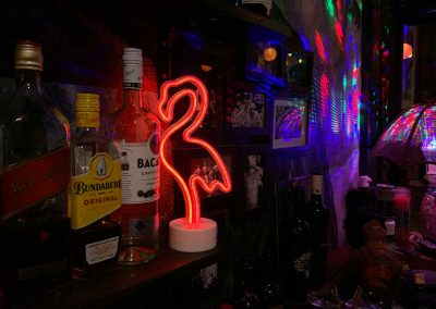 the-railyard-saloon_flamingo-lights